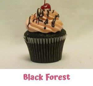 Freshly Baked Cupcakes Farmington Hills MI - Cake Crumbs - blackforest1