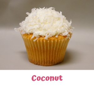 Freshly Baked Cupcakes Farmington Hills MI - Cake Crumbs - coc2