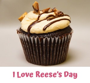 Freshly Baked Cupcakes Bloomfield Hills MI - Cake Crumbs - ilovereeses1