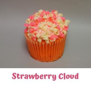Freshly Baked Cupcakes Bloomfield Hills MI - Cake Crumbs - strawberrycloud