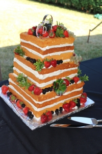 Wedding Cakes Livonia MI - Cake Crumbs - IMG_3313